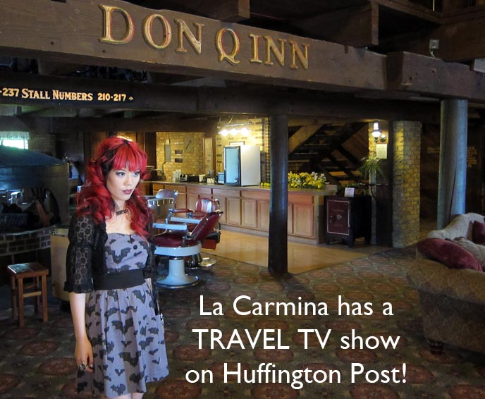 Huffington post travel show, coolhunting america, la carmina tv show, travel host, travel blogger aol, aol travel web series, web travel videos, best tv hosts, casting travel host, female reporters, female entertainment reporter, coolhunter tv, BONDAGE BED & KITSCH THEME HOTEL ROOMS! FANTASY ROOMS, STRANGE RETRO LOVE HOTELS. DON Q INN, DODGEVILLE, WISCONSIN, fantasuite hotels, fanta suite, unique honeymoon, 1970s love shack, water beds, igloo theme room, spaceship bed, swinging bed, handcuffs on bed, bondage room, love hotels, japanese love hotel