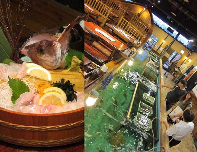 ZAUO FISHING RESTAURANT TOKYO, CHURCH-THEMED CHRISTON CAFE. FIXERS, PRODUCTION ARRANGERS FOR FOOD NETWORK TV. ZAUO fish for your dinner, shinjuku washington hotel, shinjuku zauo, bob blumer, WORLD'S WEIRDEST RESTAURANTS, FOOD NETWORK CANADA, christon cafe shinjuku, Food network tv host, SHINJUKU TOKYO JAPAN. bob blumer, tv host, travel channel, glutton for punishment, surreal gourmet, crazy japan theme cafes, maid cafes, tv hosting, fixing, japan production arrangers, tokyo fixer, craziest restaurants in the world, japanese theme cafes.