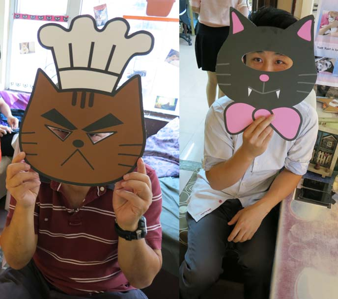 cat costumes, cat masks, ah meow, causeway bay hong kong cat cafe
