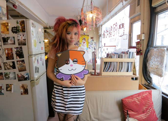 hong kong cat cafe, chinese cat cafe, ah meow, causeway bay cat cafe
