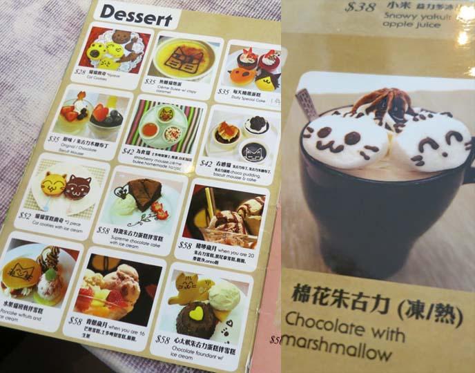 hong kong cat cafe, cats theme restaurant food