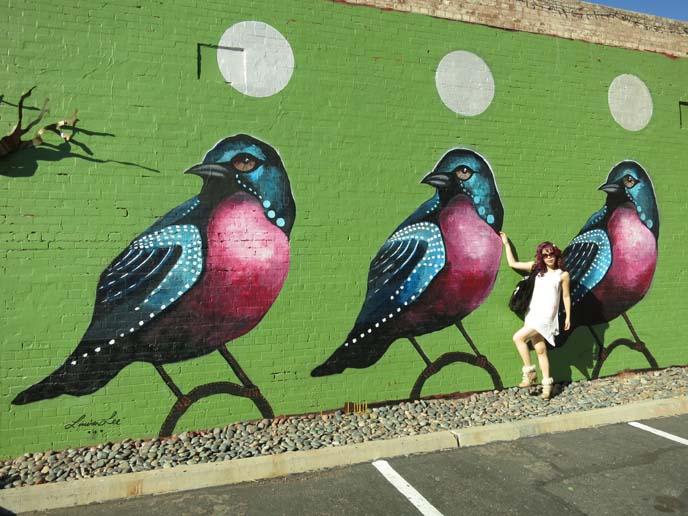 roosevelt row murals, lauren lee three birds, roosevelt row murals, phoenix arizona mural, westin downtown phoenix hotel, cool wall art, big colorful murals