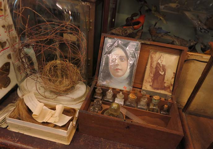 oddities, obscura antiques, season 4 episodes
