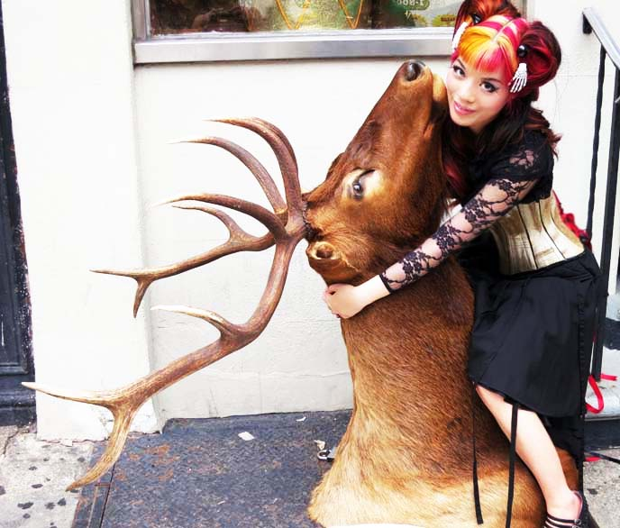 oddities season 4, elk head, goth girl tv host