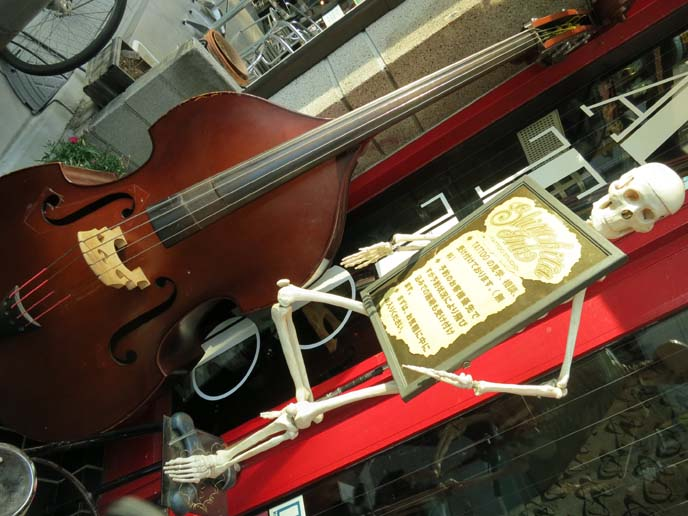 skeleton and cello, shimokita weird