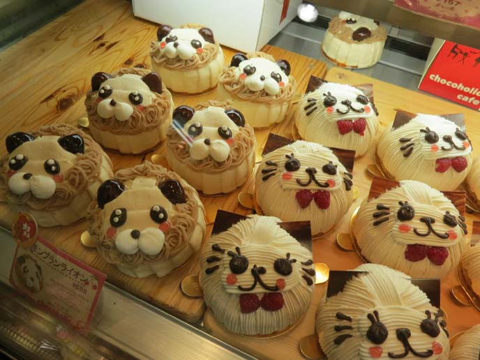 cat face cakes, cutest cake ever, kawaii japanese cakes