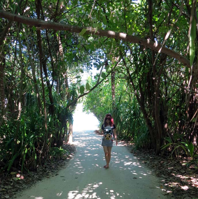 south asia jungle, indian ocean island vacations