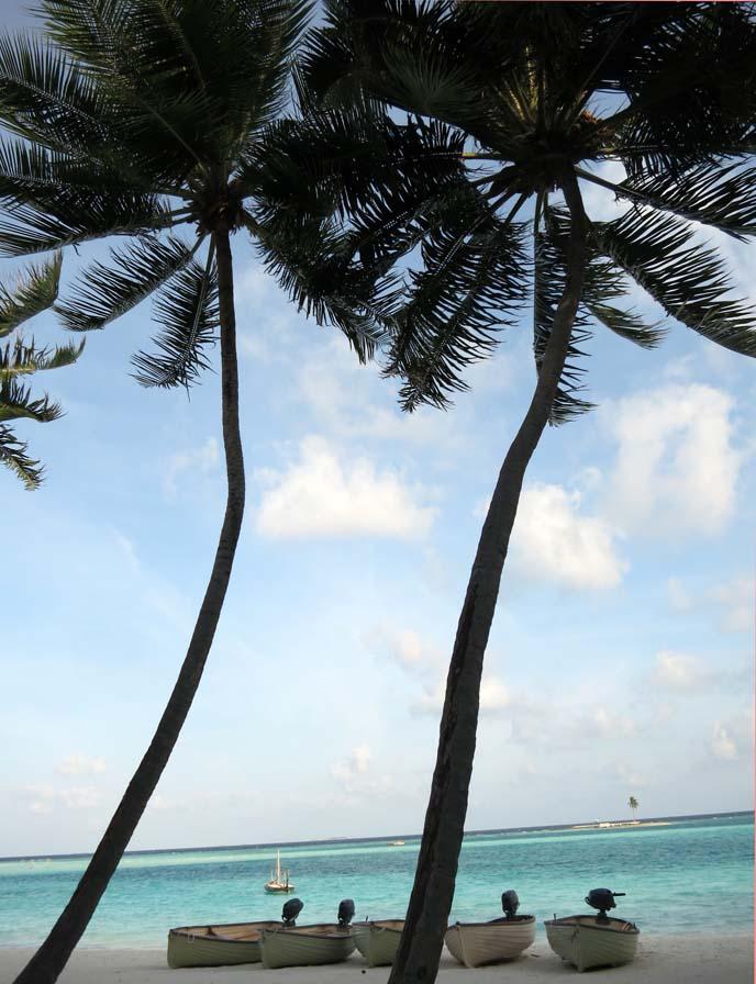 Maldives ocean, beaches, sailboats