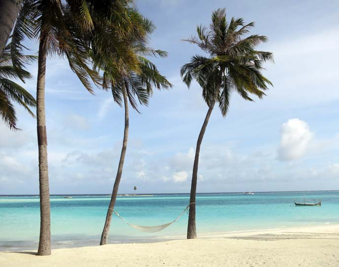 Maldives islands, beaches, palm trees, ocean