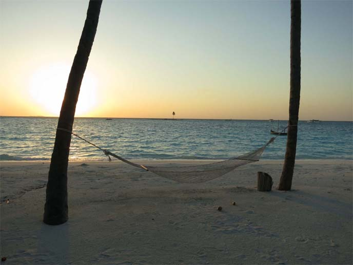 hammock sunset, beach evening view