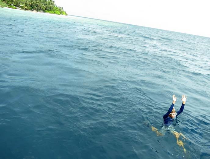Maldives snorkeling, coral reefs, diving