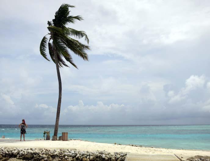 deserted island, stranded, treasure island