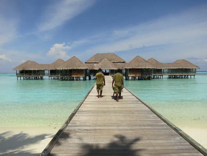 maldives villas, beach, ocean