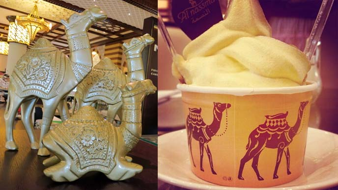 camel milk ice cream, drinks in dubai