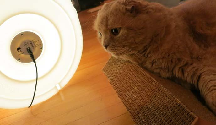 Miffy Xl Lamp From Mr Maria Dutch Design Studio Cute