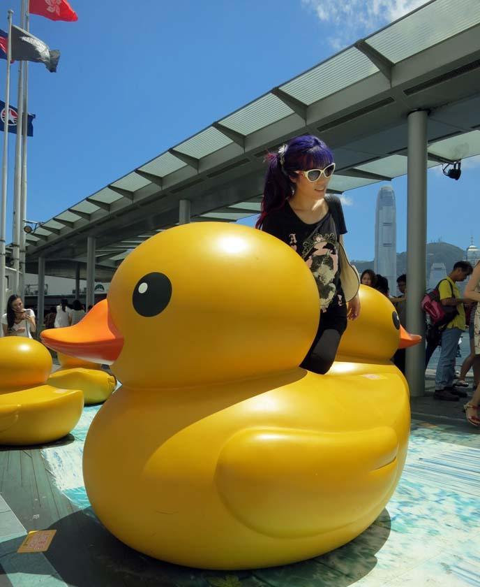 hong kong rubber duck floating