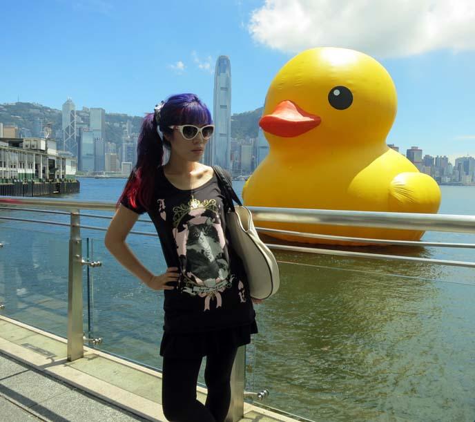 big cute kawaii duck, tsim sha tsui marina