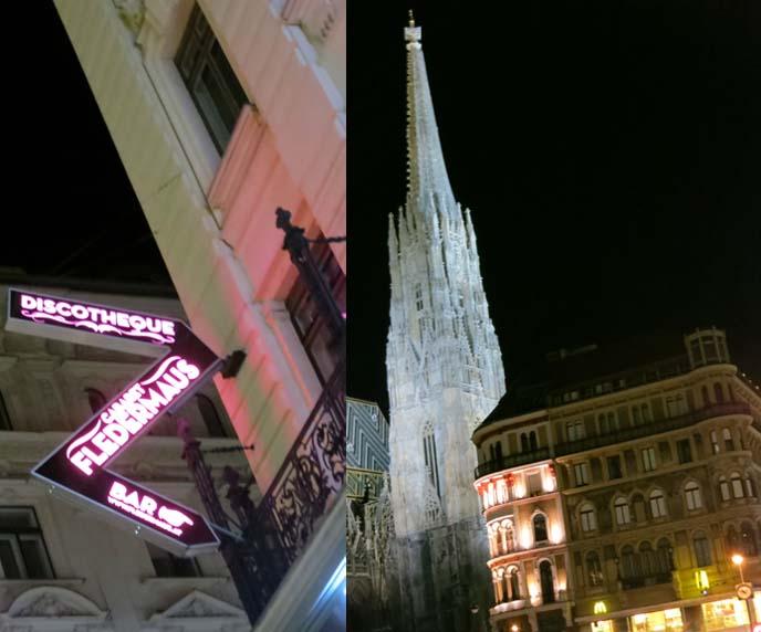 cabaret fledermaus, discotheque Vienna