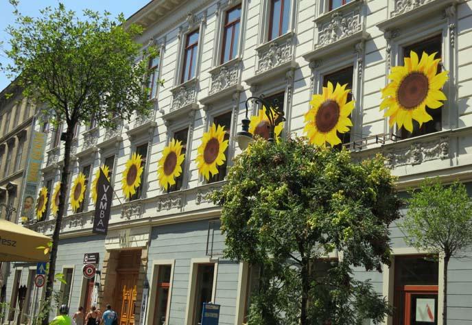 sunflowers building, van gogh exhibit