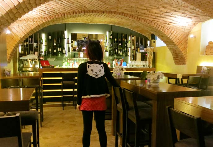 basement, zagreb wine bar, croatian wines