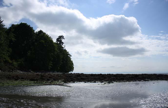 wreck beach, acadia beach vancouver