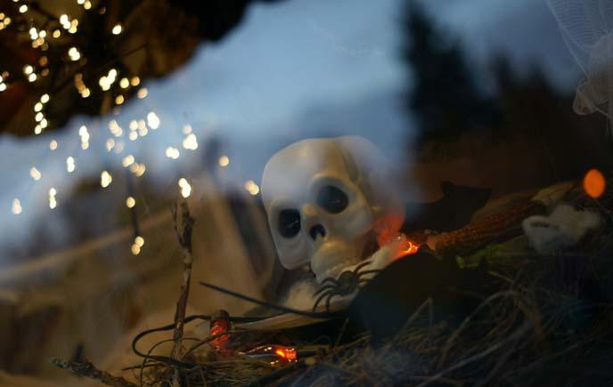 halloween bokeh