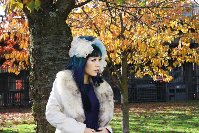 autumn foliage, trees
