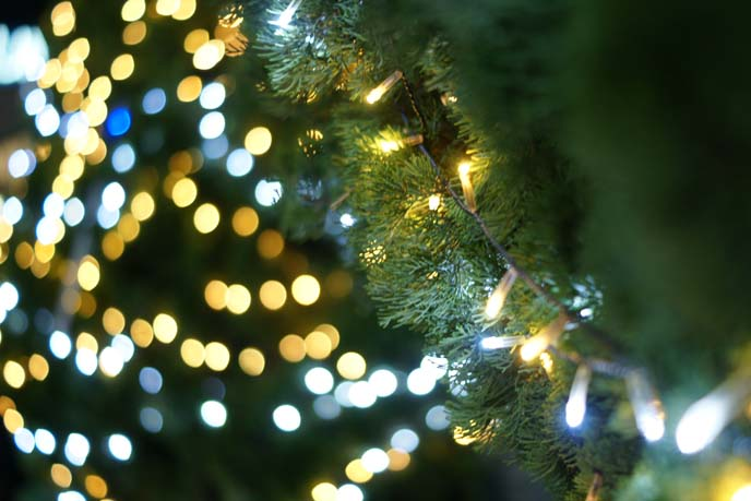 shallow depth of field, bokeh xmas lights