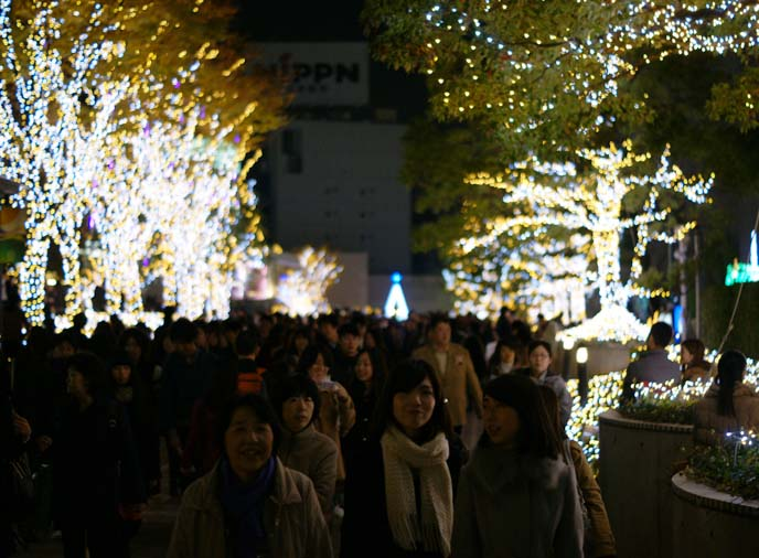shinjuku southern terrace christmas tree lights
