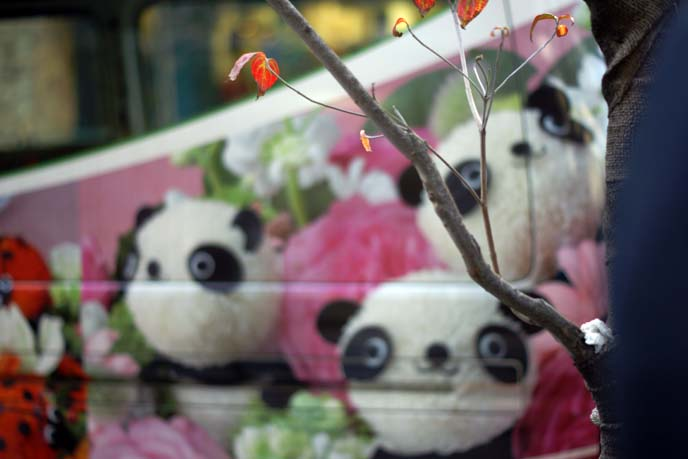 panda bear flower arrangement