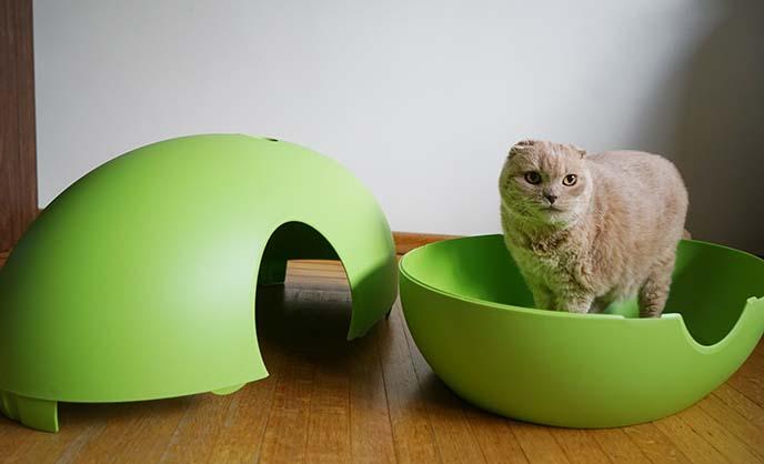 Modern Hidden Cat Litterbox Poopoopeedo By Sindesign