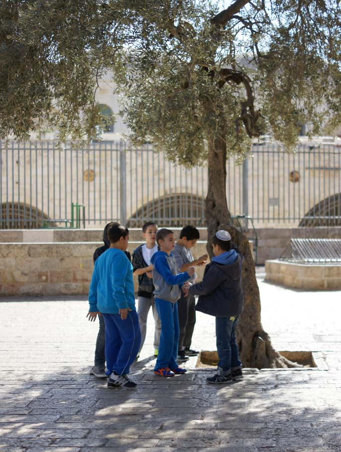jewish boys playing
