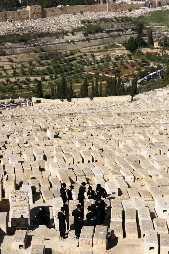 jewish cemetery, hasidic jews