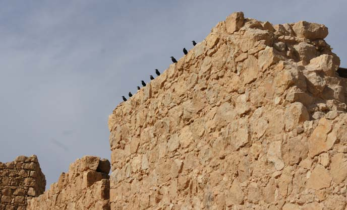 masada ancient wall