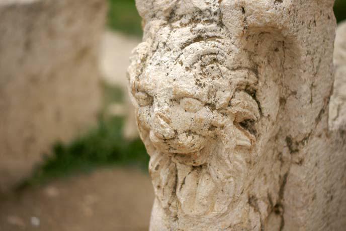 roman lion carving