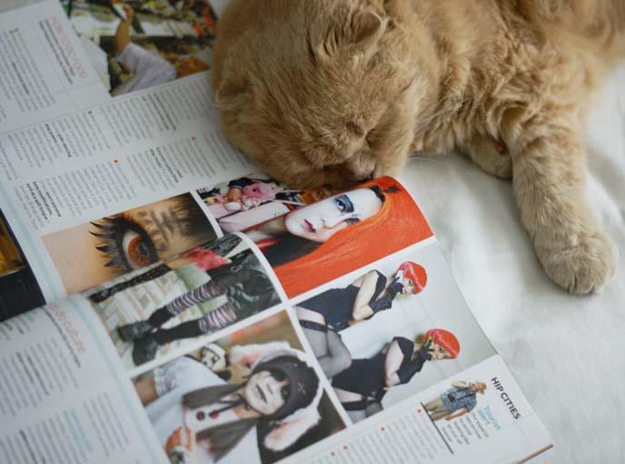 Sunday Times Travel Magazine, japan weird