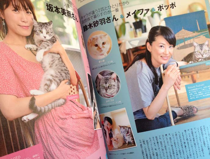 japan cat magazine photos