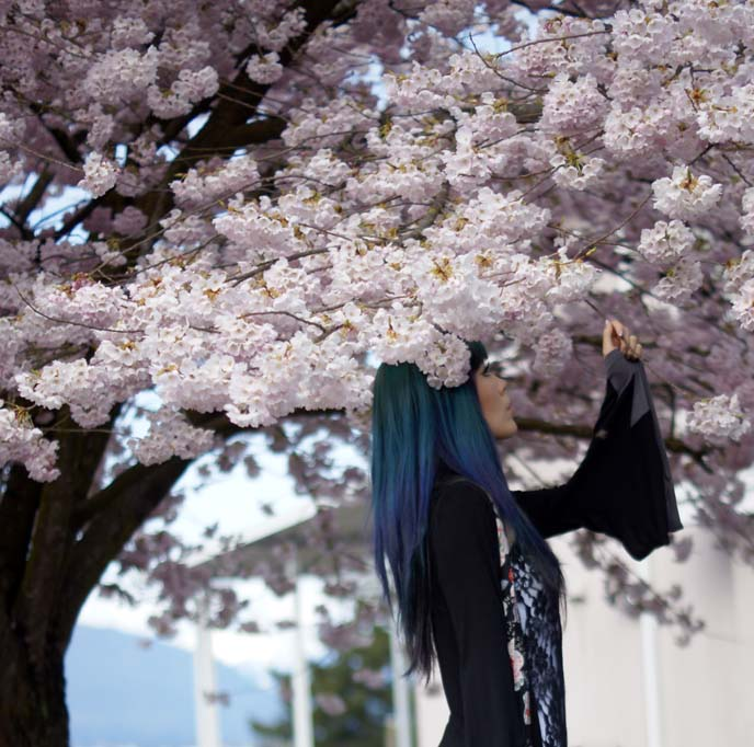 hanami festival goth girl