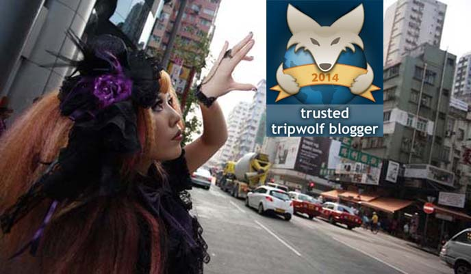 tripwolf travel blogger of the month