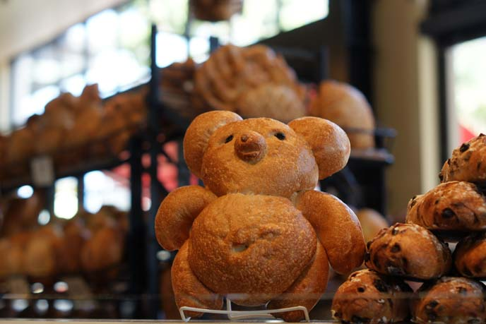 bourdin bear shaped bread