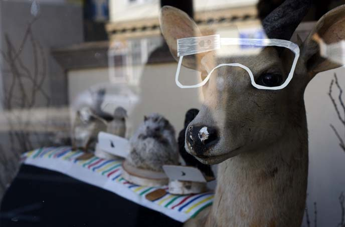 hipster san francisco shop