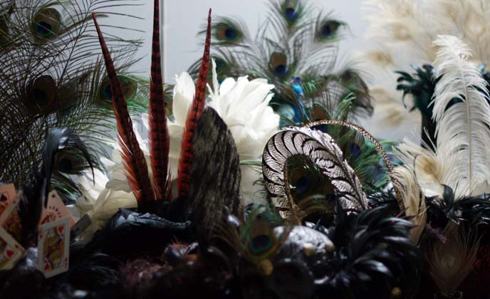 peacock feather hats crowns