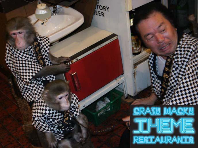 monkey theme cafe japan