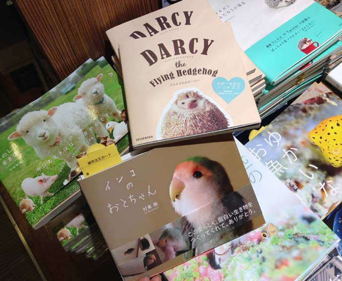 cute animal books japan