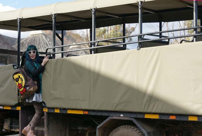 safari open vans