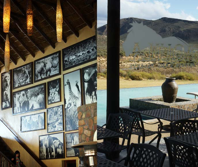 aquila safari resort cape town