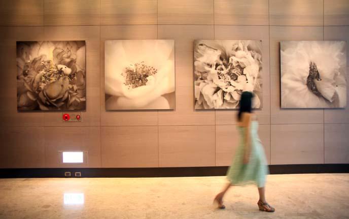 yang yongliang flower art