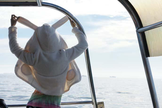 south africa sailing tour