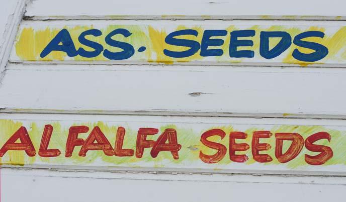 bo kaap spice shop, atlas trading