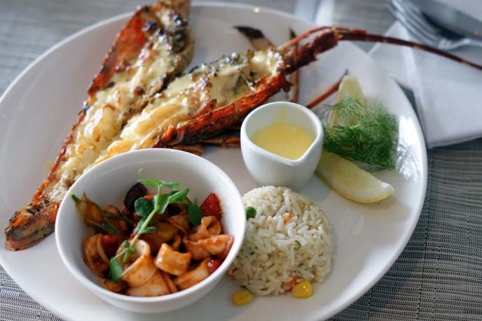 langoustines, south african seafood